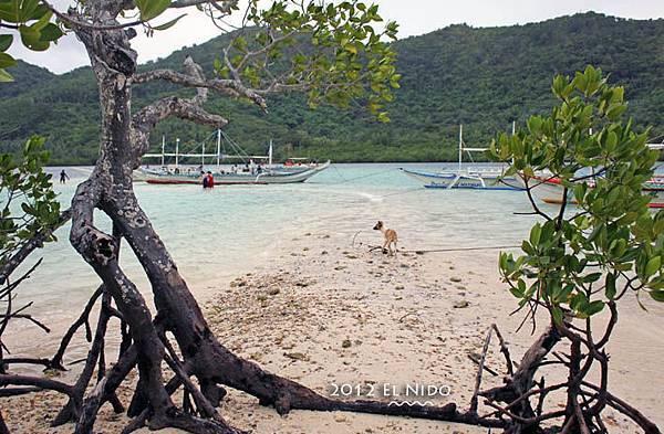 Snake Island0