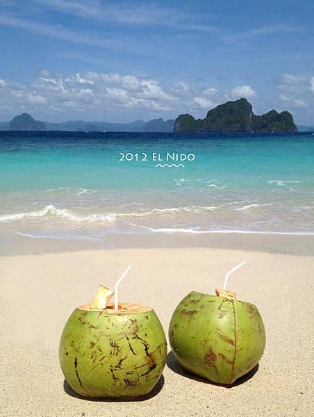 無人島-椰子