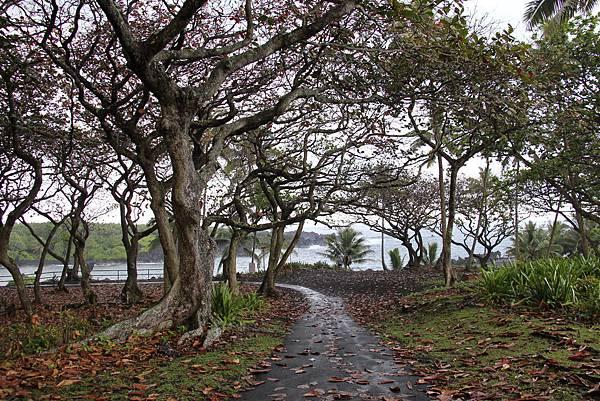 Waianapanapa State Park .JPG