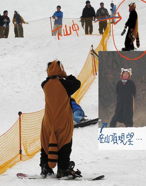 浣熊滑雪.jpg