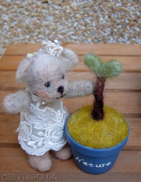熊與小盆栽.jpg