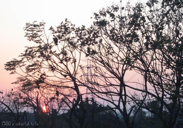 回程-微笑夕陽.jpg