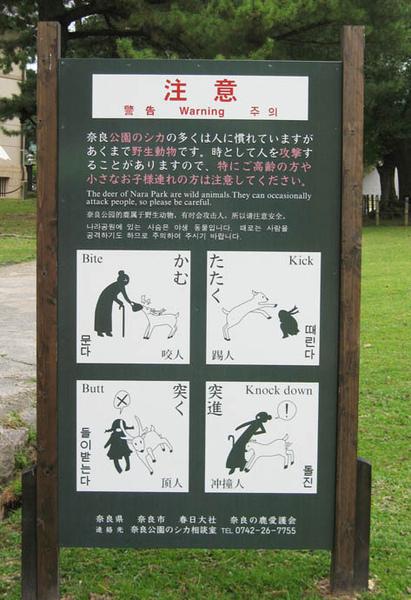 奈良鹿注意.jpg