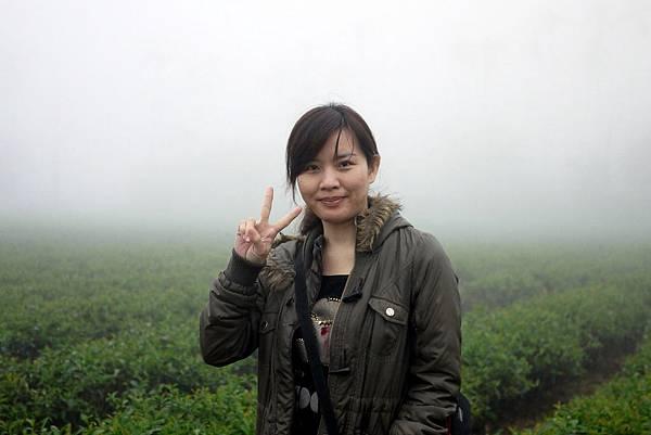 20120309茶園-3