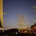 20120326雙星拱月