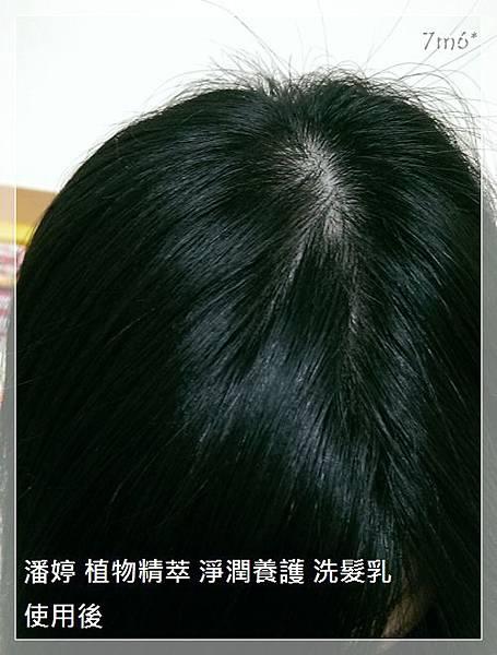 潘婷洗髮精_06~