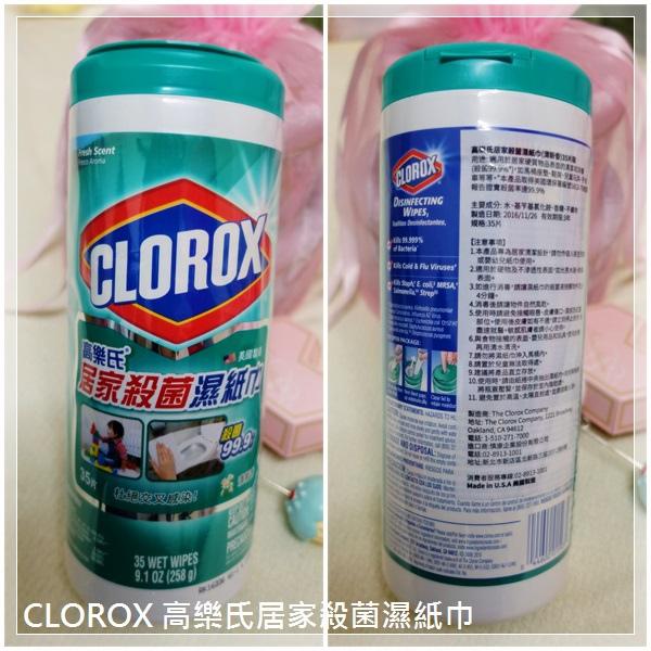 CLOROX-01~~l.jpg