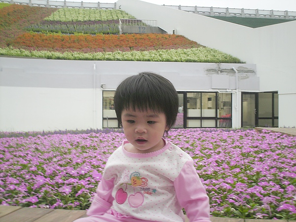 2010年10月9日兒童.花博 (24).JPG