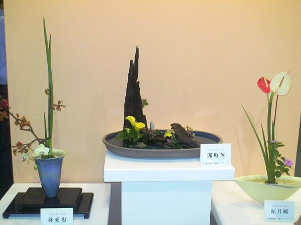 2010年10月9日兒童.花博 (50).JPG