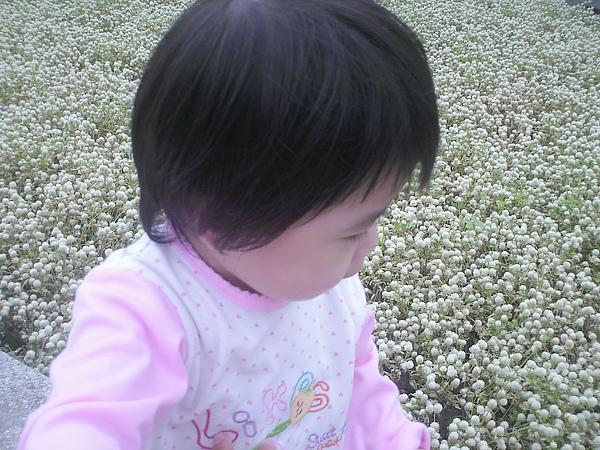 2010年10月9日兒童.花博 (9).JPG