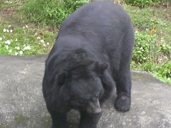 2009-03-01 (4).JPG