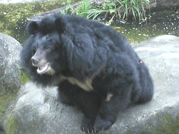2009-03-01 (5).JPG