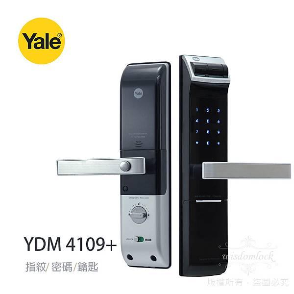 Yale-4109_1000-bc_01