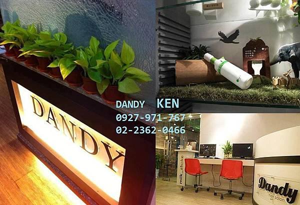 Dandy ken