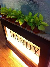 DANDY 綠化植物
