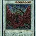 黑薔薇龍.jpg