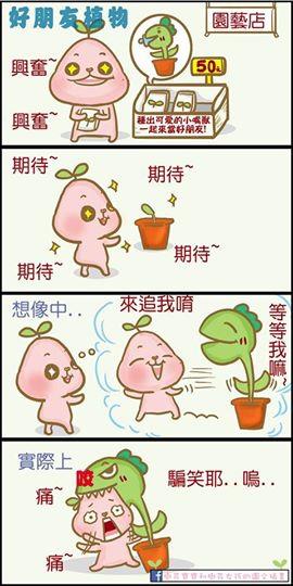 植物好朋友