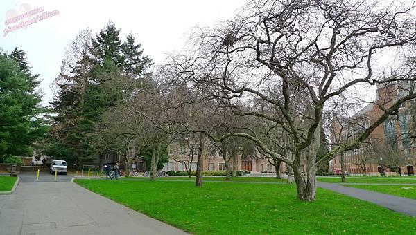 華盛頓大學 (11).jpg