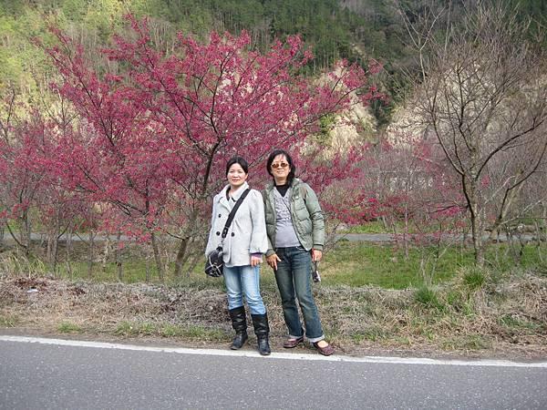 武陵農場一日遊