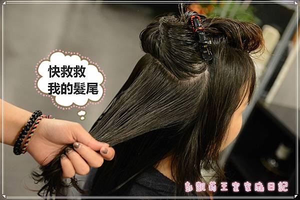 DSC_46241_meitu_3.jpg
