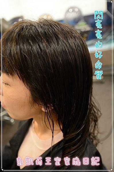 DSC_47451_meitu_3.jpg