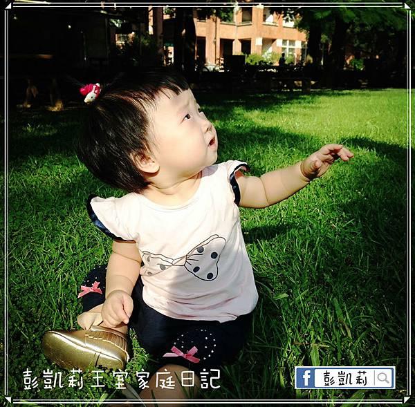 1474203043736_mh1474203315869_meitu_2.jpg