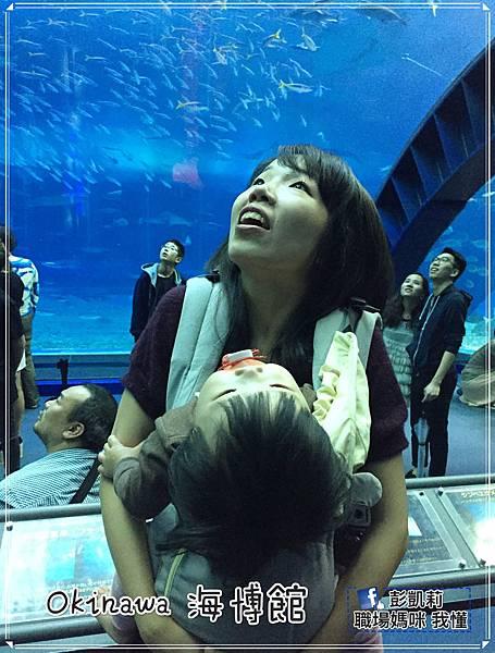 沖繩14~17_170112_0142_meitu_3.jpg