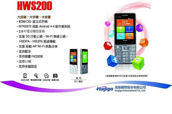 HWS200.jpg