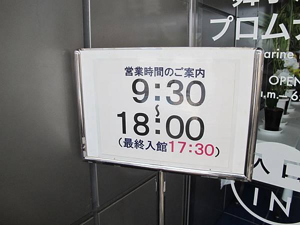 IMG_8031.JPG