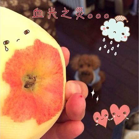 照片+5.JPG