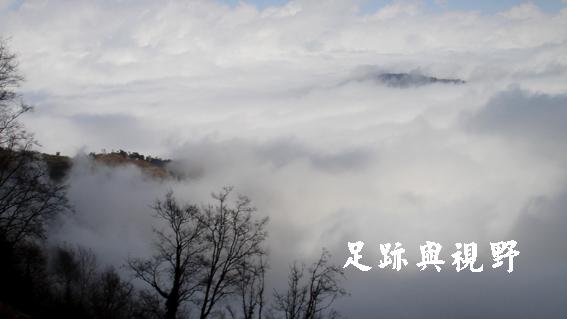 20110220的觀霧霧景.JPG