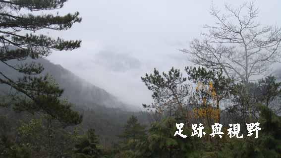 迷霧.JPG