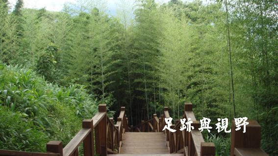 21觀景台順著竹林間的的路徑直走.JPG