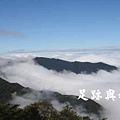 09觀霧夏天是藍天白雲的季節.JPG