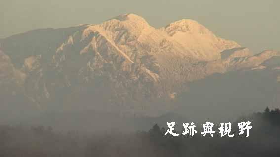 18冬日的雪山主蜂.JPG