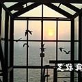 東引遊客中心黑尾鷗展出空間觀日落