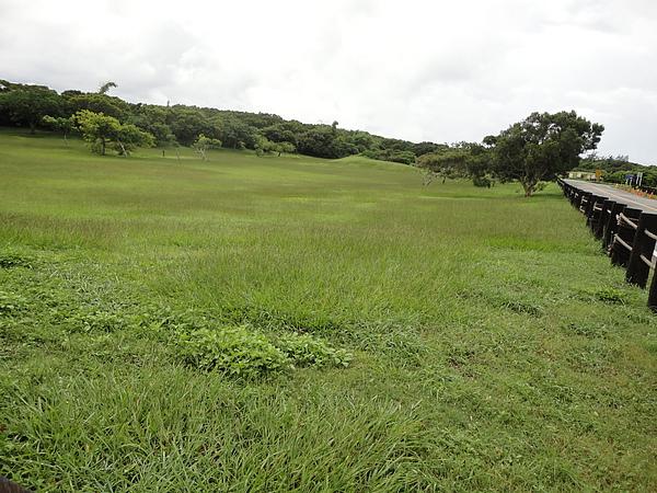 社頂國家公園內的草原