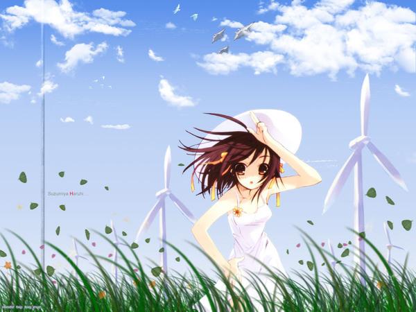 The_Melancholoy_of_Haruhi_Suzumiya_20.jpg
