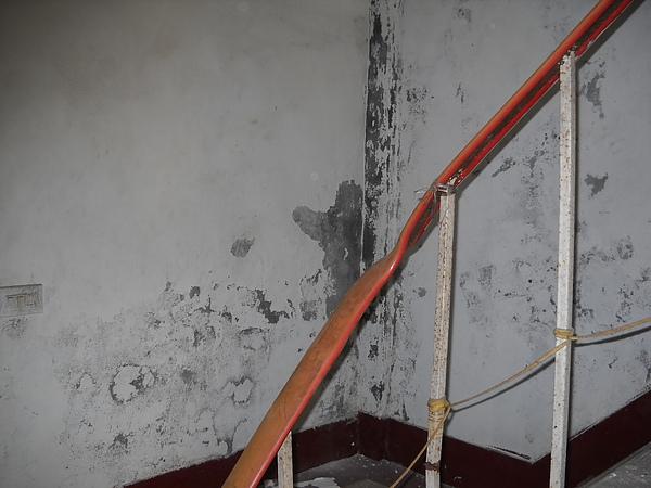 舊屋翻新一施作前 壁癌情形