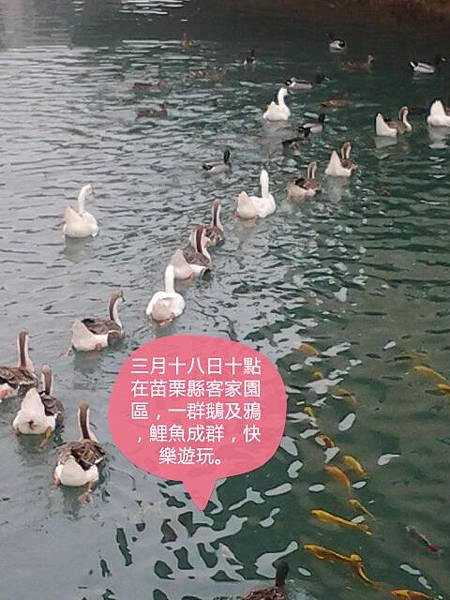 20160318_100048_mh000