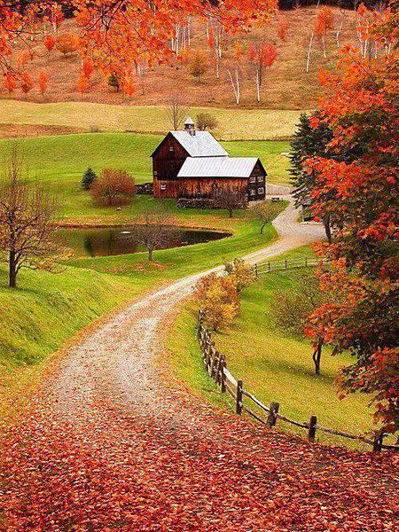 20140816-美麗的農村風景-1