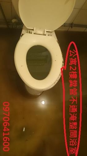 公寓2樓糞管不通淹整間浴室
