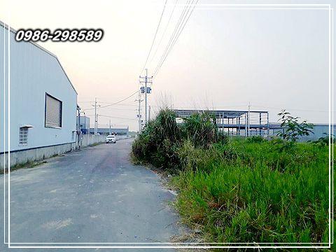 P03.jpg
