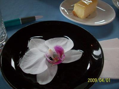 70七星潭 原野牧場 桌上的蘭花_大小 .jpg