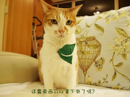 肥貓胖狗的鄉村小窩 狗狗粽子圖4.jpg