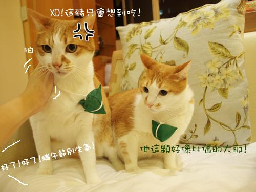 肥貓胖狗的鄉村小窩 狗狗粽子圖5.jpg