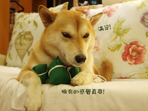 肥貓胖狗的鄉村小窩 狗狗粽子圖6.jpg