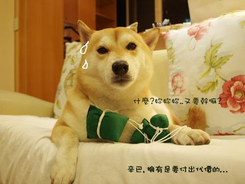 肥貓胖狗的鄉村小窩 狗狗粽子圖7.jpg