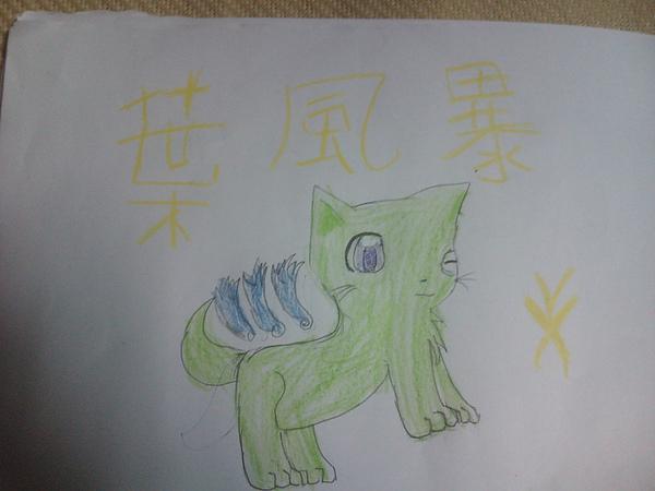 葉風暴(玥).jpg