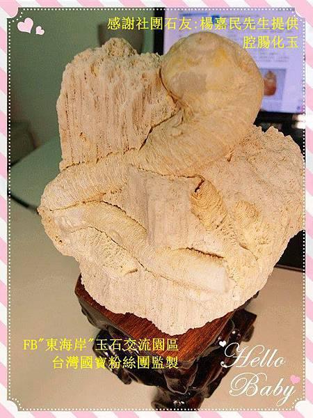 楊嘉民腔腸化玉_副本